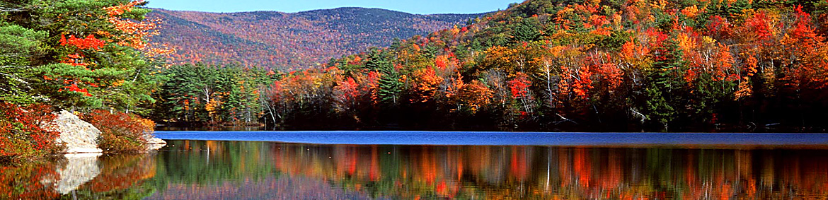 trees with bright colored foliage overlooking a lake
