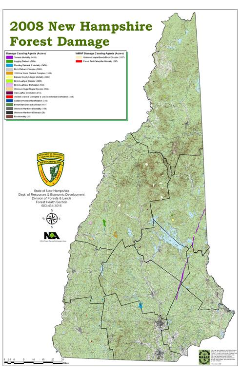 Maps | Reports | NH Division of Forests and Lands Map Nh on idaho map, ma map, de map, al map, fl map, ri map, wy map, ky map, united states map, vt map, iowa map, or map, new hampshire road map, new hampshire state map, md map, mi map, quebec map, missouri map, nc map, maine map,
